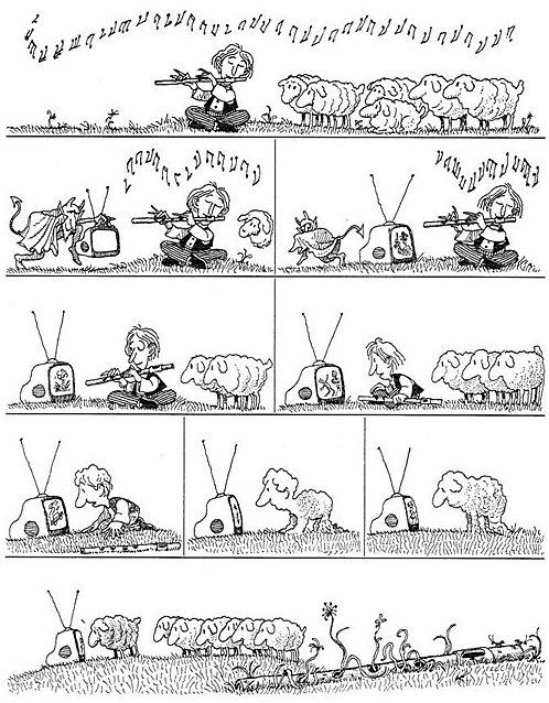 funny-Quino-television-sheep
