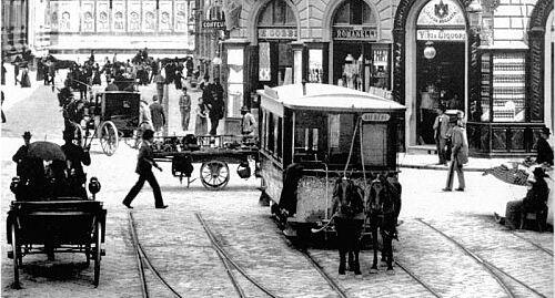 tram-fir