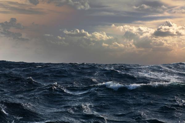g&n oceano