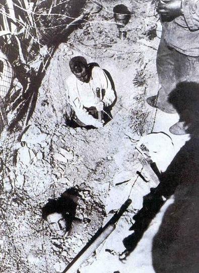 Prigionieri Fnl Torturati dai francesi