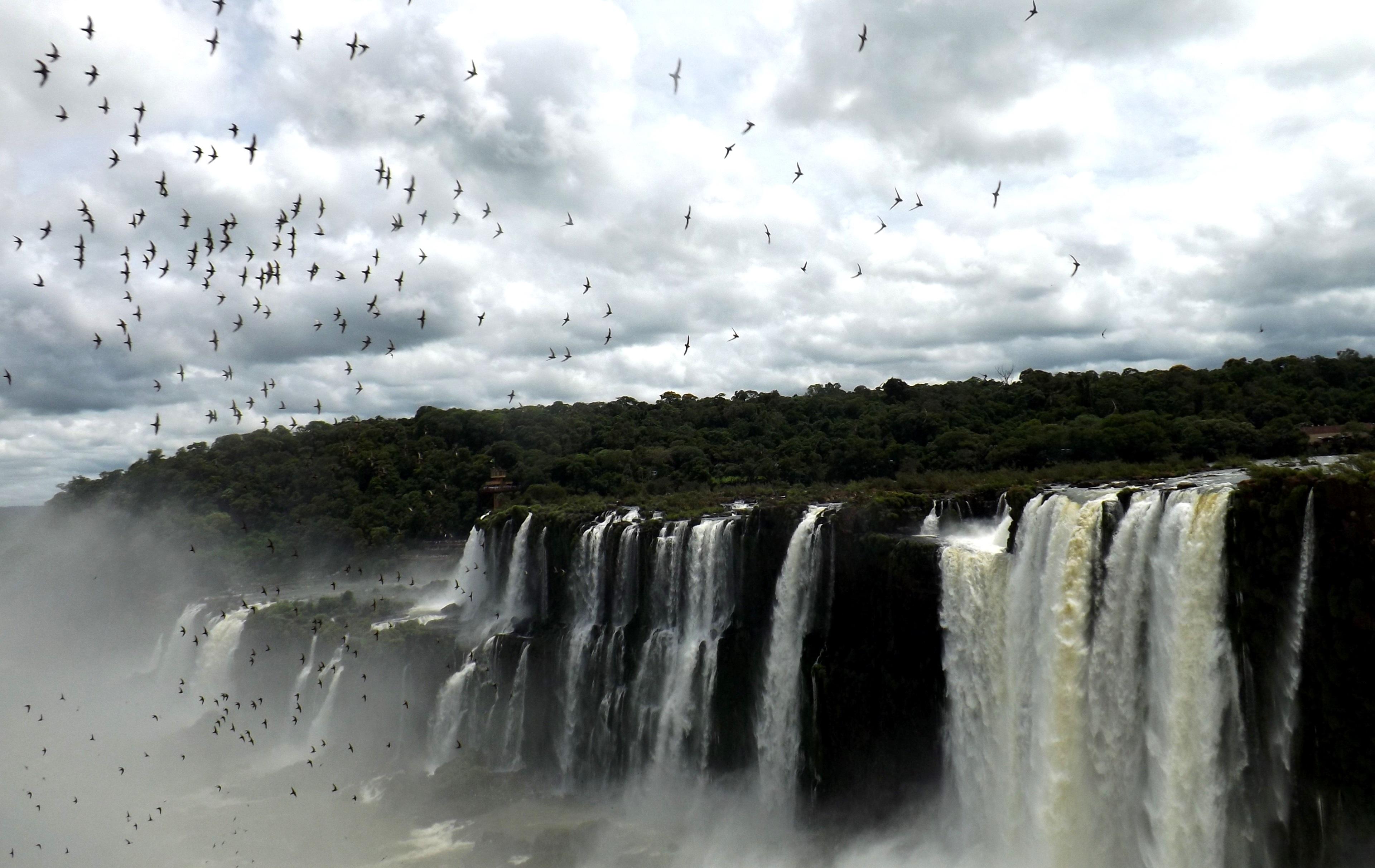 Argentina2014-15 119