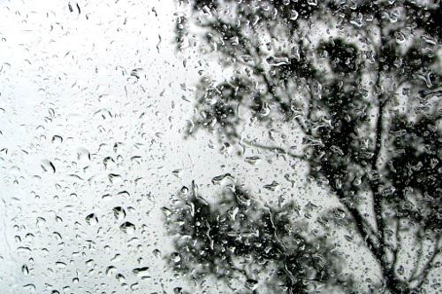 1 Pioggia